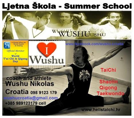 ljetna skola wushu