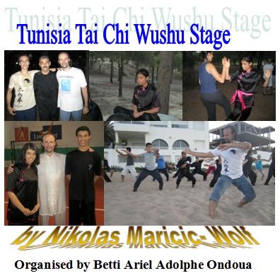 wushu kung fu qigong