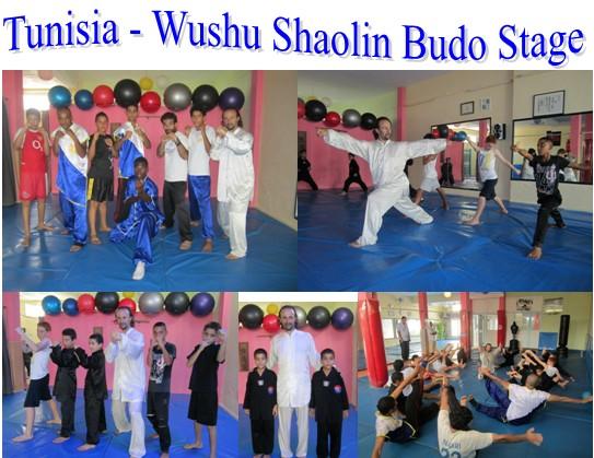 tunisia shaolin stage