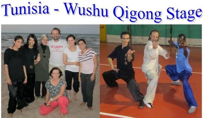 wushu qigong stage