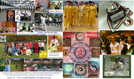 MACAU-WORLD-TAIJI-QIGONG-DAY-2014 (9)