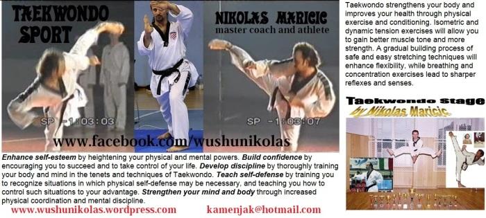 taekwondo-card