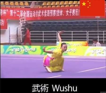 wushu111