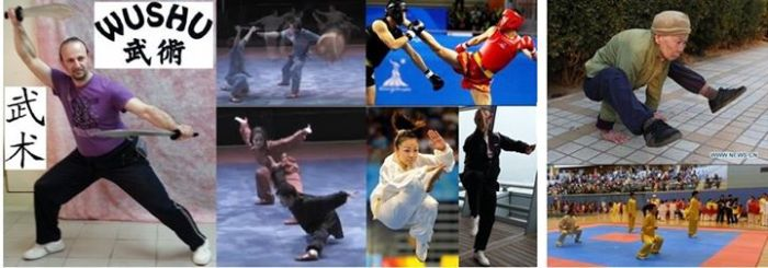 168 Everyone has its own preferences , but for me Wushu is all, as coach and master is not up to me to g