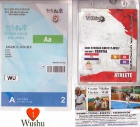 wushu-qigong-iwuf (107)