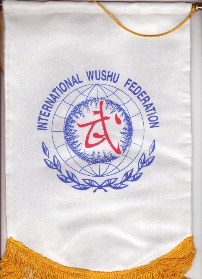 wushu-qigong-iwuf (114)