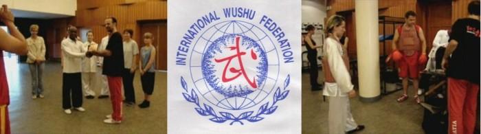 wushu-qigong-iwuf (157)