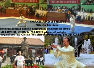 international-taichi-champion-nikolas - Copy